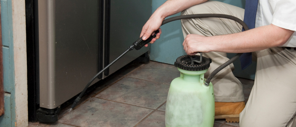 httpwww.istockphoto.comstock-photo-8782876-exterminator.php