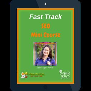 Fast Track SEO Mini Course